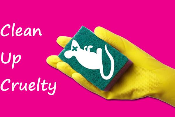 Campagne Europese dierenorganisaties lanceren campagne voor verbod dierproeven huishoudmiddelen